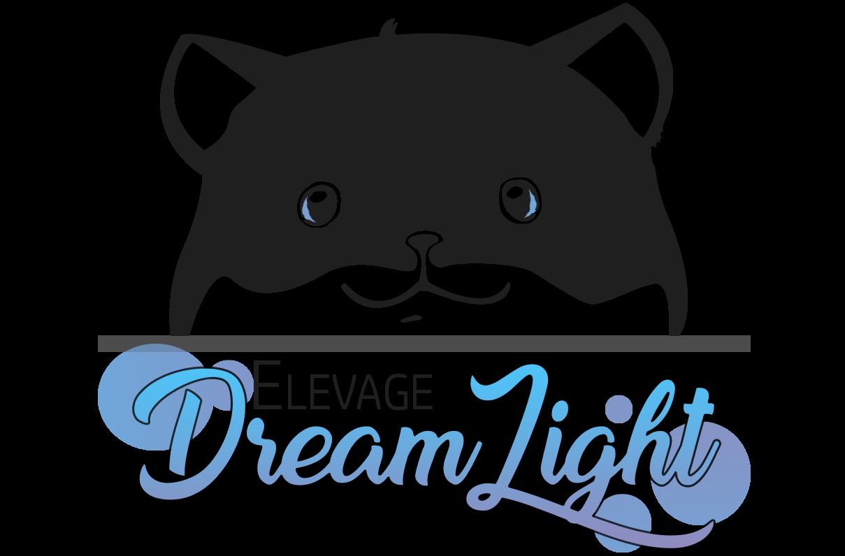 DREAMLIGHT